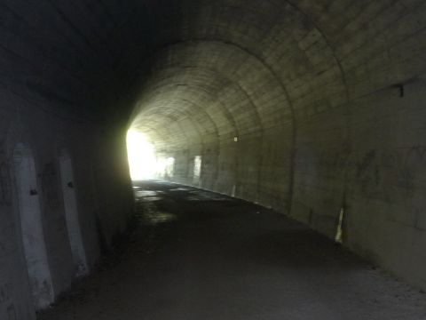 Im Autunnel